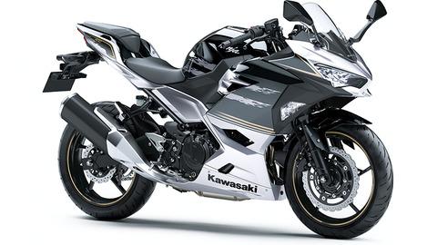 ninja400-silver-1 (1)